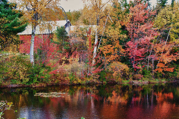 Autumn Foliage New England Art Print featuring the photograph Maine Barn Through The Trees by Jeff Folger