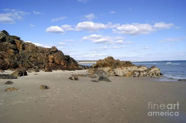 Art Print featuring the photograph Maine Beach by Elizabeth-Anne King