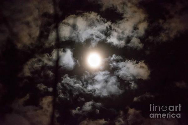 Art Print featuring the photograph Moonlight by Cheryl Baxter