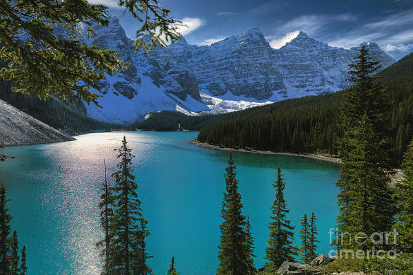 Canada Art Print featuring the photograph Moraine Lake by Frank Wicker