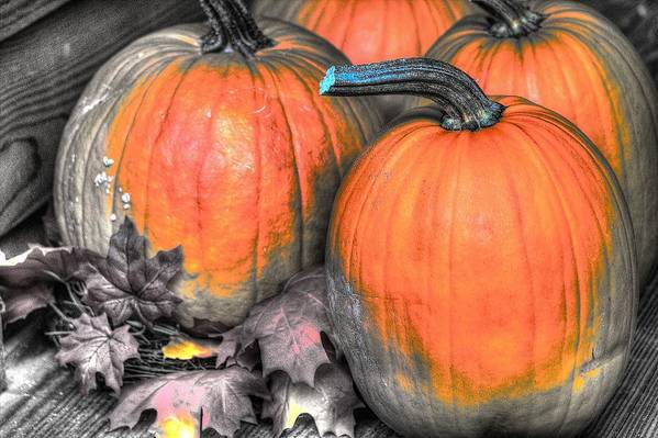 Autumn Art Print featuring the photograph More Pumpkins by Charlotte Daniels