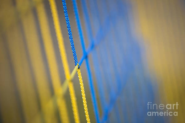 Net Mesh Network Colours Yellow Blue Abstract Focus Art Print featuring the photograph Network by Maurizio Bacciarini