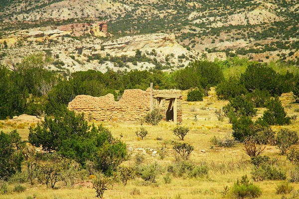 Art Print featuring the photograph New Mexico Ruins by Jeff Swan