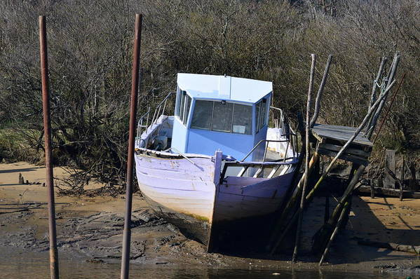 Boat Art Print featuring the photograph Old Abandoned Boat by Bishopston Fine Art