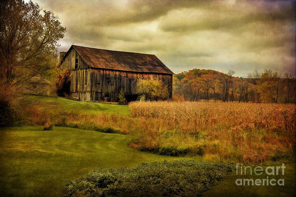 Barn Art Print featuring the photograph Old Barn In October by Lois Bryan
