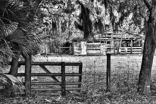 Barn Art Print featuring the photograph Old Chisolm Island Barn by Scott Hansen