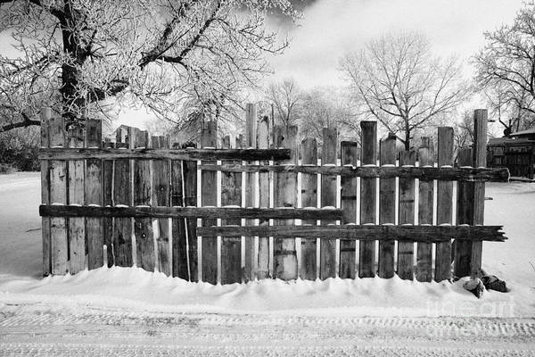 Old Art Print featuring the photograph old patched up wooden fence using old bits of wood in snow Forget Saskatchewan by Joe Fox