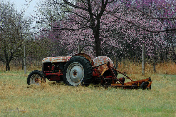 Tractor Art Print featuring the photograph Old Tractor And Redbuds by Jill Westbrook