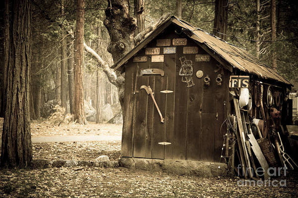 Aged Art Print featuring the photograph Old Wooden Shed Yosemite by Jane Rix