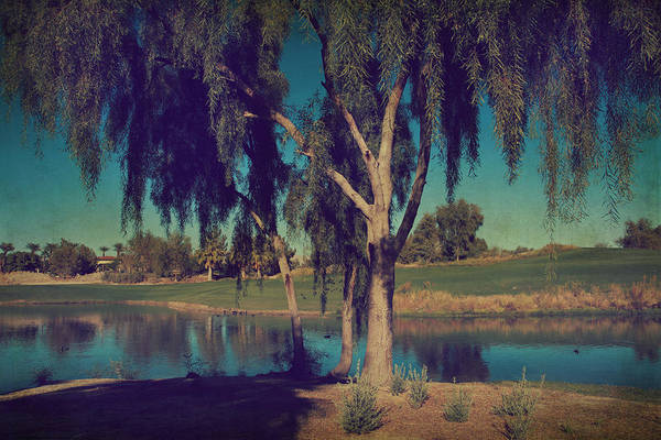 Palm Desert Art Print featuring the photograph On A Lazy Afternoon by Laurie Search
