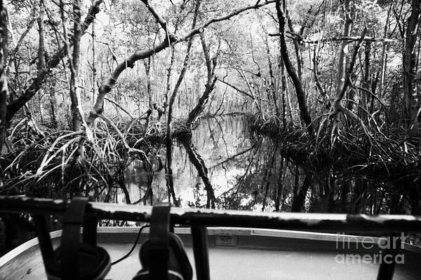 Airboat Art Print featuring the photograph On Board An Airboat Ride Through A Mangrove Jungle In Everglades City Florida Everglades by Joe Fox