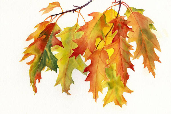Orange Art Print featuring the painting Orange And Yellow Oak Leaves by Sharon Freeman