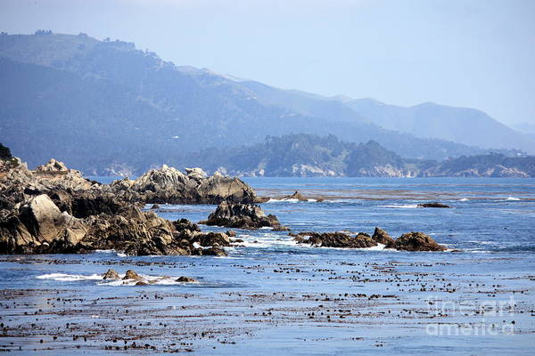 Ocean Art Print featuring the photograph Pacific Blues by Carol Groenen