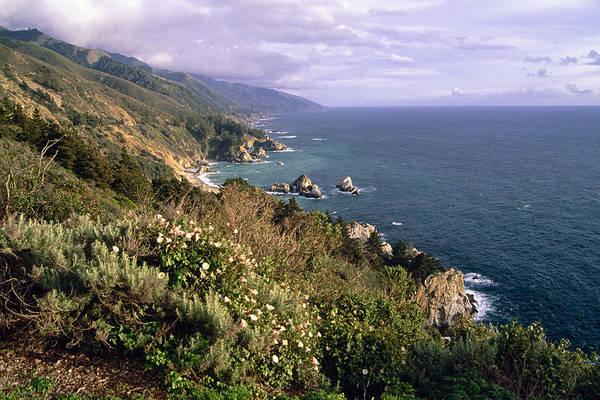 Landscape Art Print featuring the photograph Pacific Coastline At Big Sur by George Oze