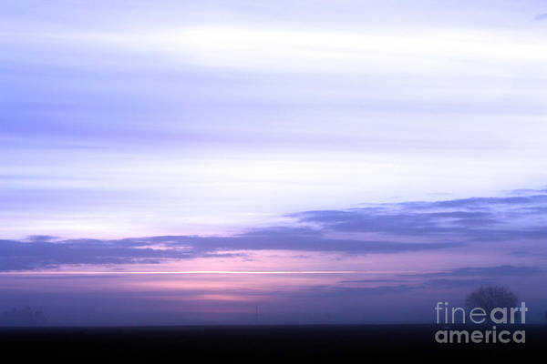 Sunset Art Print featuring the photograph Painted Sky by Nick Gustafson