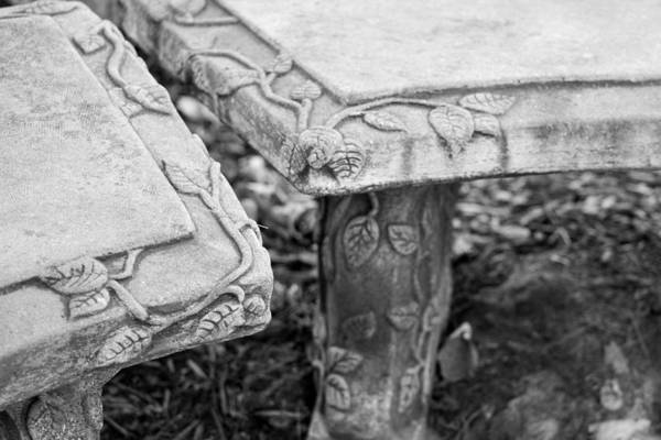 Bench Art Print featuring the photograph Park Bench 2 by Mary Bedy