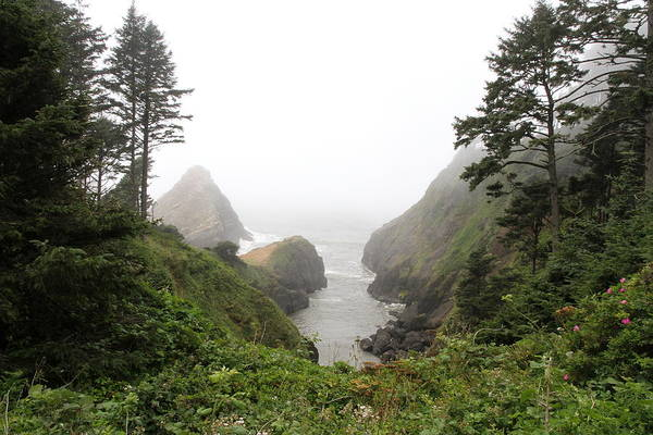 Heceta Head Lighthouse Art Print featuring the photograph Parrot Rock In The Fog by Christiane Schulze Art And Photography