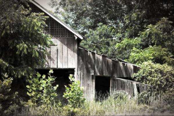 Building Art Print featuring the photograph Passing Of Time by Tom Gari Gallery-Three-Photography