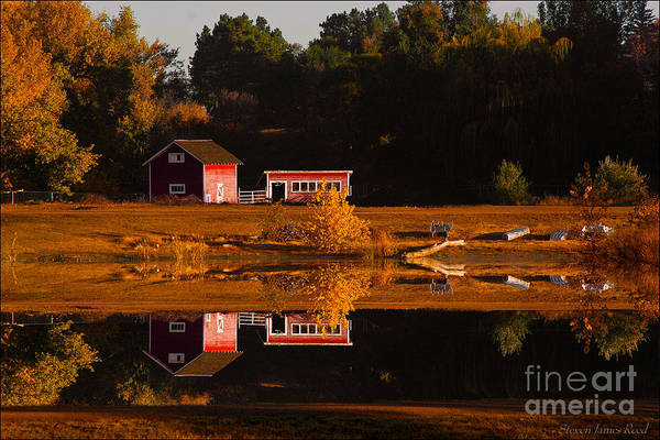 Nature Art Print featuring the photograph Peaceful Morning by Steven Reed