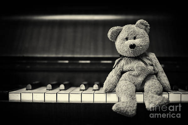 Teddy Bear Art Print featuring the photograph Piano Bear by Tim Gainey