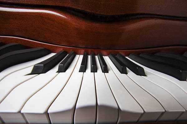 Piano Art Print featuring the photograph Piano Dreams by Garry Gay