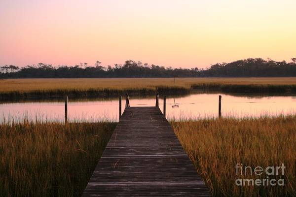 Pink Art Print featuring the photograph Pink And Orange Morning On The Marsh by Nadine Rippelmeyer