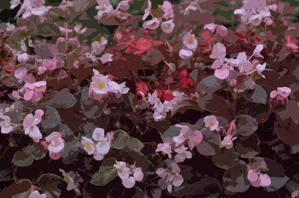 Flowers Art Print featuring the photograph Pink Purple Riot by Kathy King