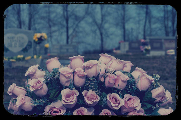 Roses Art Print featuring the photograph Pink Roses by Melissa Wyatt
