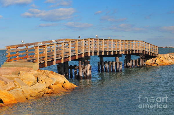 Plymouth Massachusetts Print featuring the photograph Plymouth Harbor Breakwater by Catherine Reusch Daley