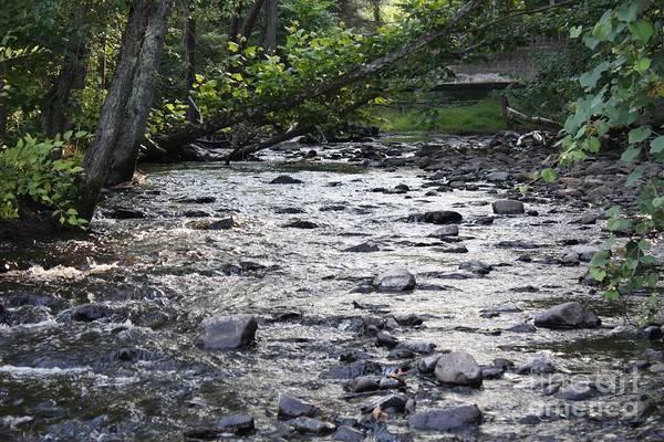 Poconos Gentle Stream Art Print featuring the photograph Poconos Gentle Stream by John Telfer