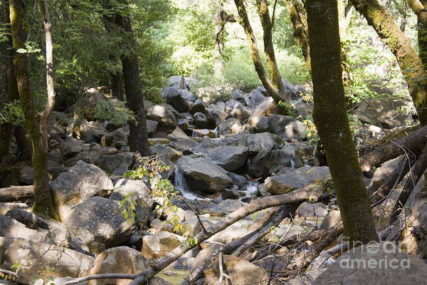 Landscape Art Print featuring the photograph pr 135 - A Very Dry Stream by Chris Berry
