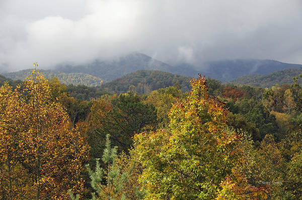 Kenny Francis Art Print featuring the photograph Rainy Fall Day In The Mountains by Kenny Francis