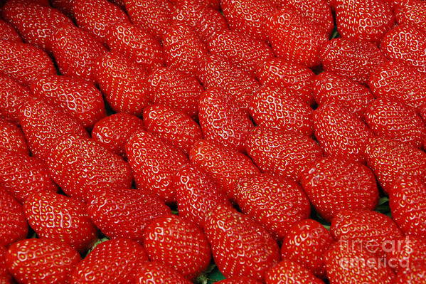 Strawberries Art Print featuring the photograph Red And Ripe by Allen Beatty