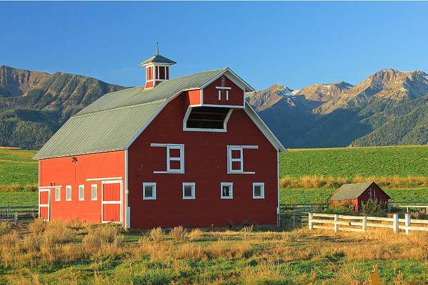 Fall Colors Art Print featuring the photograph Dn5939-red Barn In The Wallowas by Ed Cooper Photography