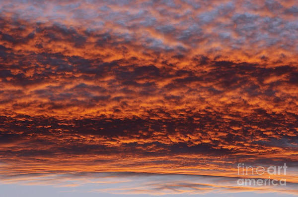 Rosy-sky Art Print featuring the photograph Red Sky by Michal Boubin