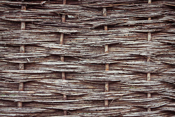 Architecture Art Print featuring the photograph Reed Fence by Tom Gowanlock