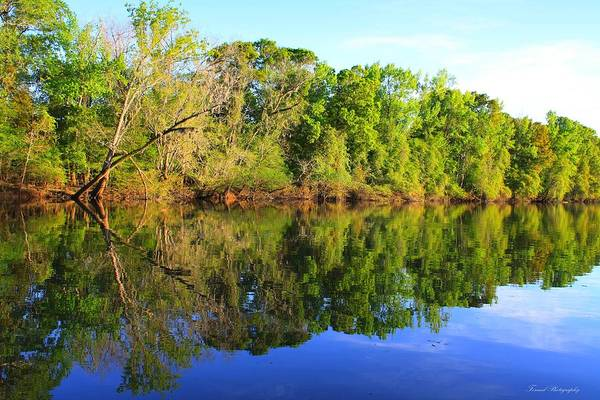 River Art Print featuring the photograph Reflections On The River by Debra Forand