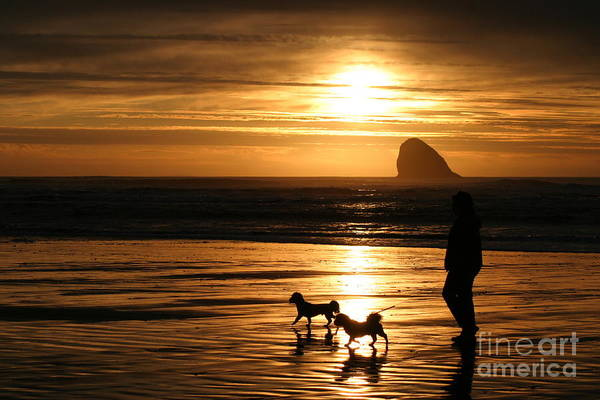 Beach Art Print featuring the photograph Reflections-peace At Sunset by Alan Conner