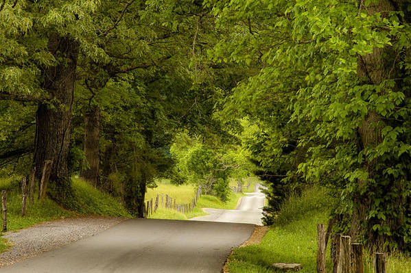 Cades Cove Print featuring the photograph Ribbon Road by Andrew Soundarajan