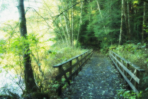 Bridge Art Print featuring the photograph Rice Lake In North Vancouver by Marlene Ford