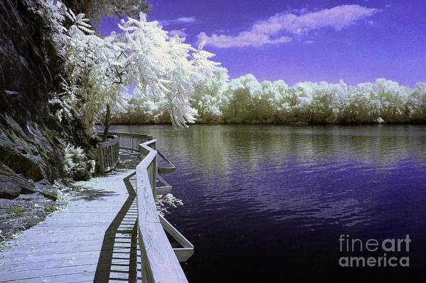 Infrared Art Print featuring the photograph River Walk by Paul W Faust - Impressions of Light
