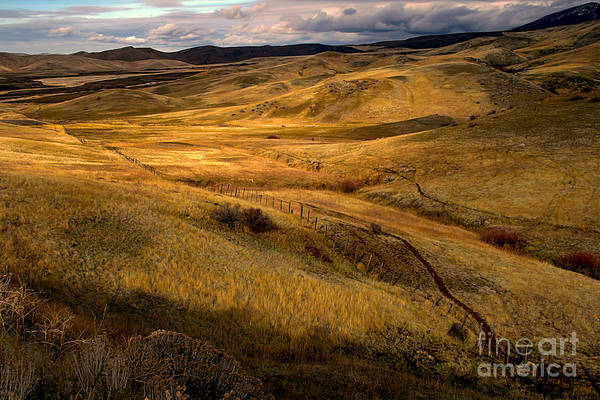 Landsacape Print featuring the photograph Rolling Hills by Robert Bales
