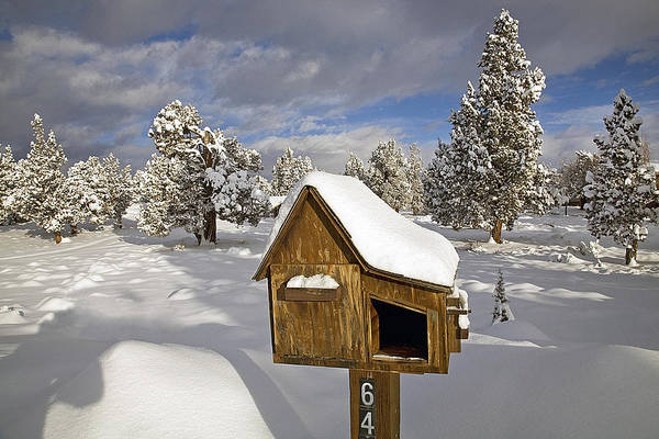 Snowy; Snow-packed; Slick; Wet; Stormy; Rural; Country; Farm; Farm To Market; Road; Highway; Street; Central; Oregon; Bend; Cascade; Mountains; Juniper; Fir; Pine; Evergreen; Forest; Tree; Trees; Winter; Wintery; Snow Drift; Shovel; Shoveling; Snow; Snow Plow; Senior Citizen; Elderly; Seniors; Ouside; Activity; Exercise; Rural; Country; Mail; Box; Mailbox Art Print featuring the photograph Rural Mailbox by Buddy Mays