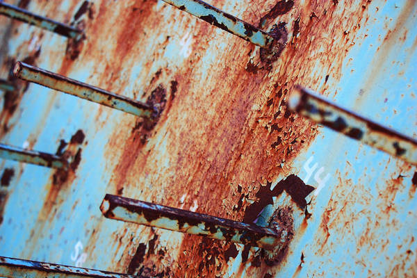Rust Art Print featuring the photograph Rusty Spikes by Nicole Doering