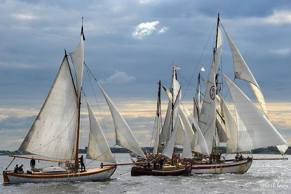Sailing Art Print featuring the photograph Sailing The Limfjord by Robert Lacy