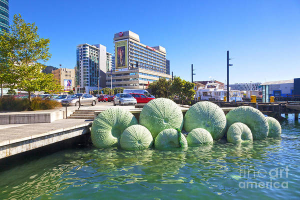Artwork Art Print featuring the photograph Sea Urchin Sculpture Wellington New Zealand by Colin and Linda McKie