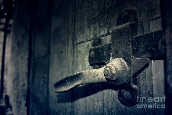 Door Print featuring the photograph Secrets Within by Trish Mistric