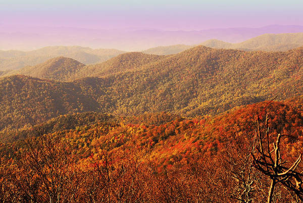 North Carolina Art Print featuring the photograph Smokey Mountains by Will Burlingham