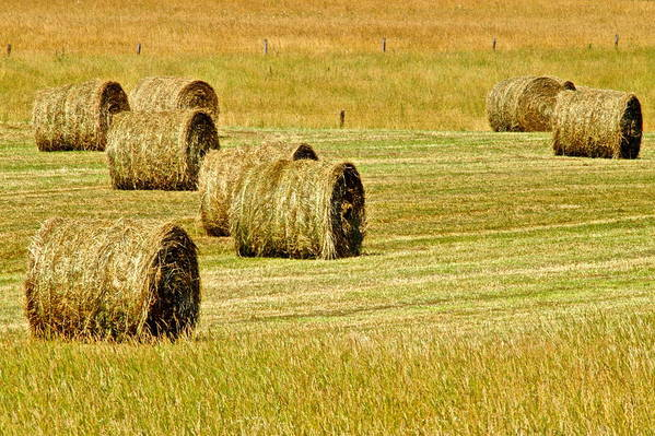 Landscape Print featuring the photograph Smoky Mountain Hay by Frozen in Time Fine Art Photography