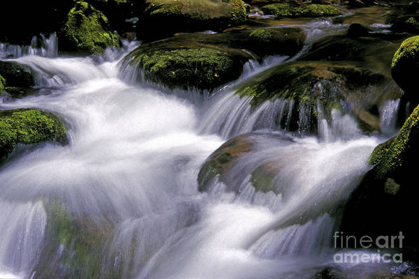 Stream Art Print featuring the photograph Smoky Mountain Stream by Paul W Faust - Impressions of Light